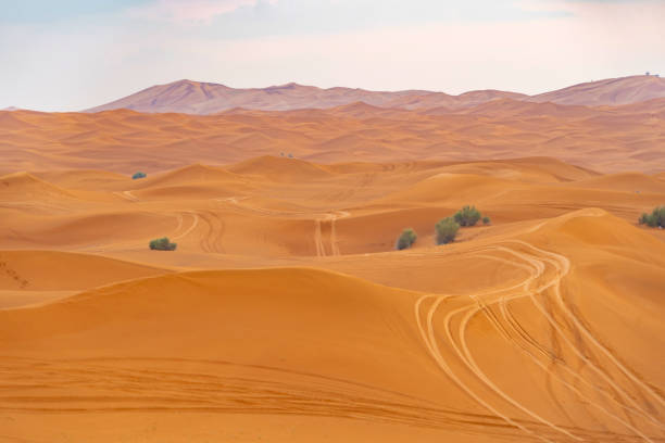Red Desert Safari with sand dune in Dubai City, United Arab Emirates or UAE. Natural landscape background at sunset time. Famous tourist attraction. Pattern texture of sand with blue sky. stock photo