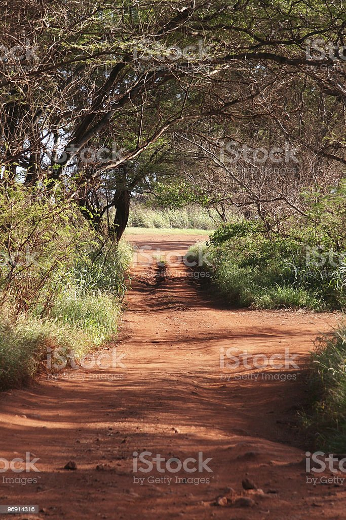 Red dirt road in Kauai, Hawaii royalty-free stock photo