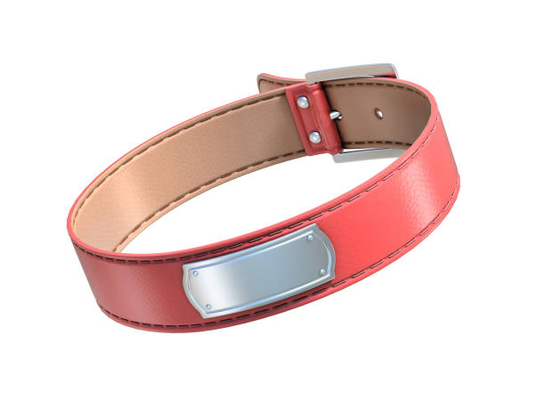 red dog collar isolated on white red dog collar isolated on white collar stock pictures, royalty-free photos & images