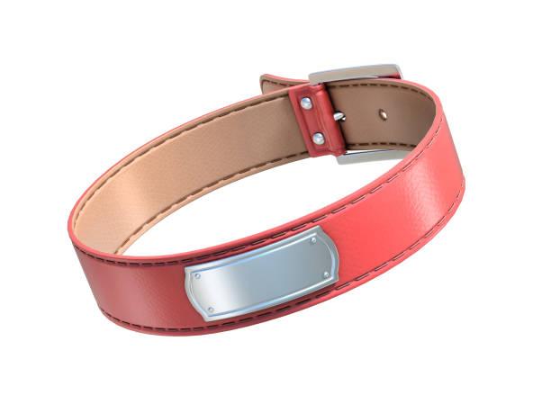 rotes hundehalsband isoliert auf weiss - halsband stock-fotos und bilder