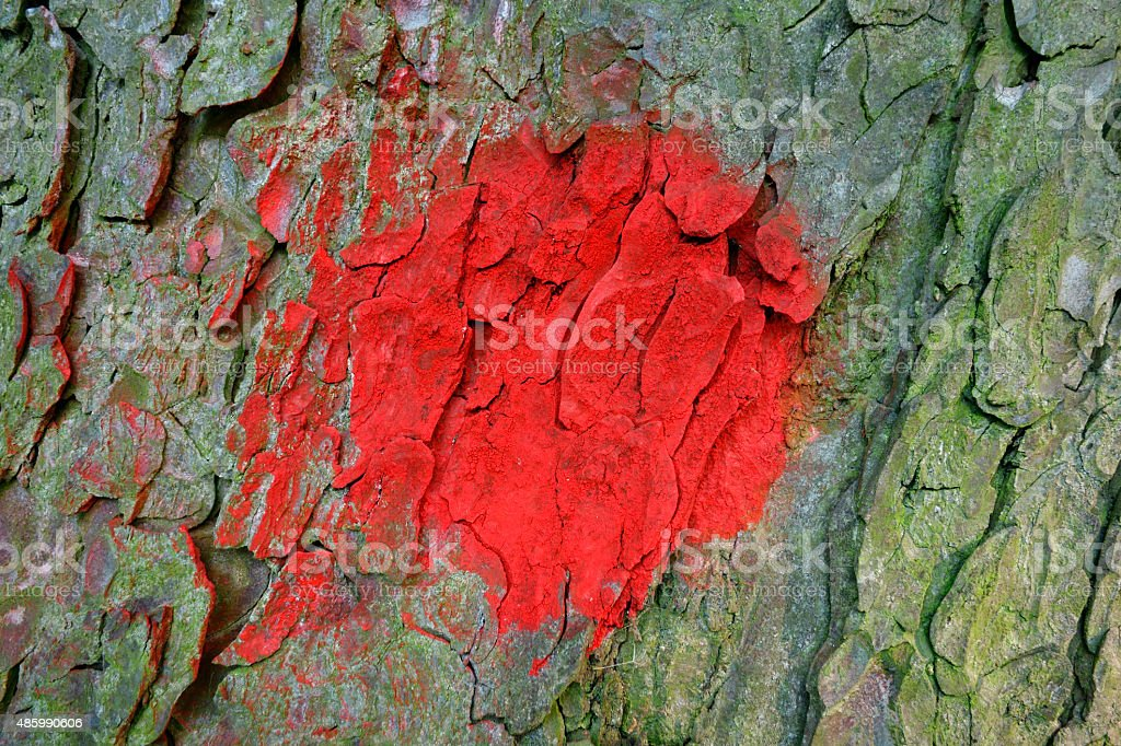 Roter Punkt stock photo