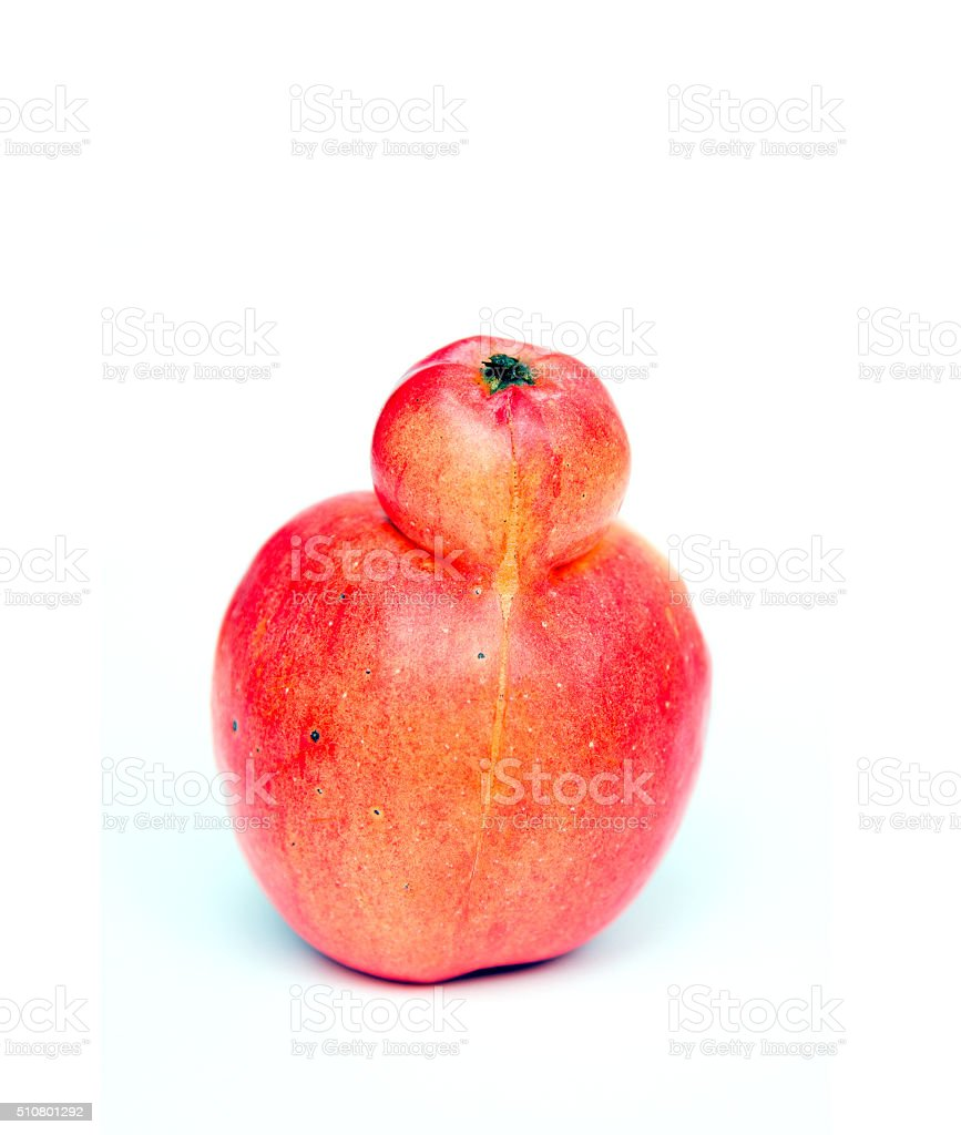Red double Conjoined apple on white background stock photo