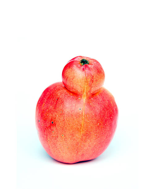 red double conjoined apple on white background - disfigure stock pictures, royalty-free photos & images