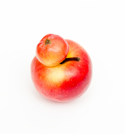 Red double Conjoined apple on white background