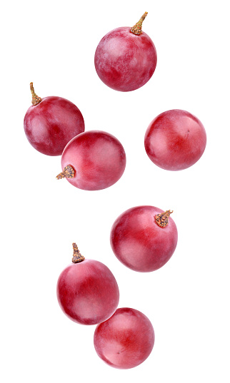 falling grapes isolated on a white background with clipping path. whole berries in the air.