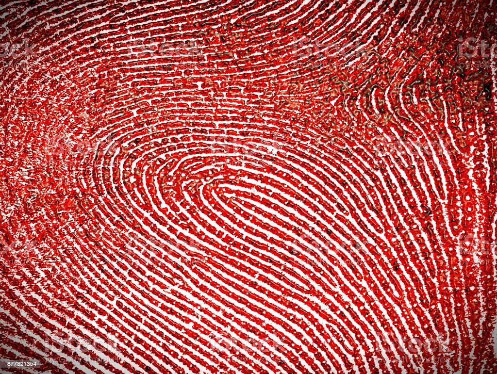 Red fingerprint as background stock photo