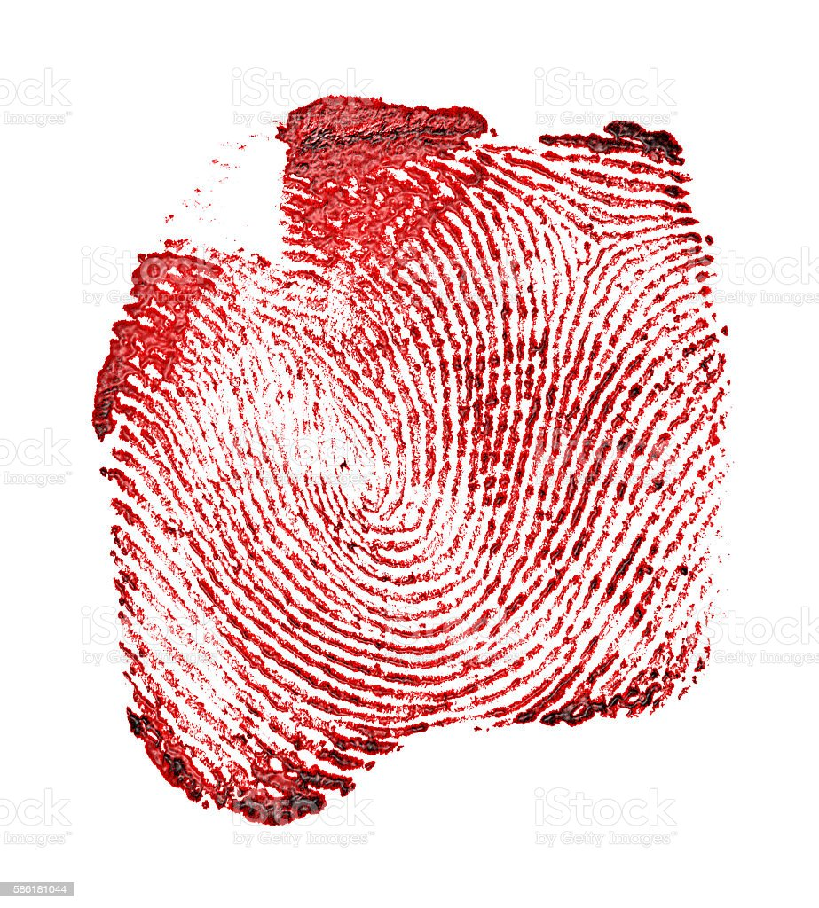 Red fingerprint on white background stock photo