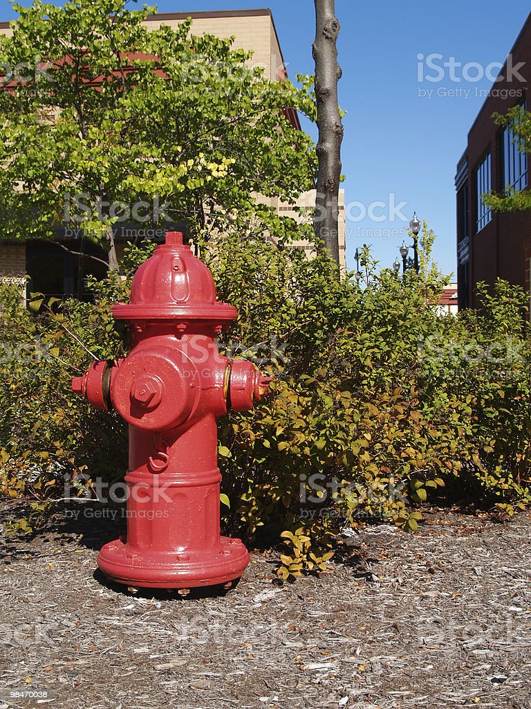 Red Fire Hydrant Next to a Shopping Center royalty-free stock photo