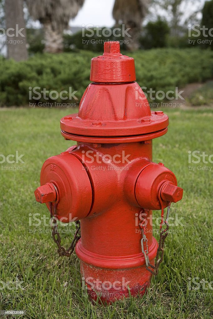 Red Fire Hydrant. royalty-free stock photo