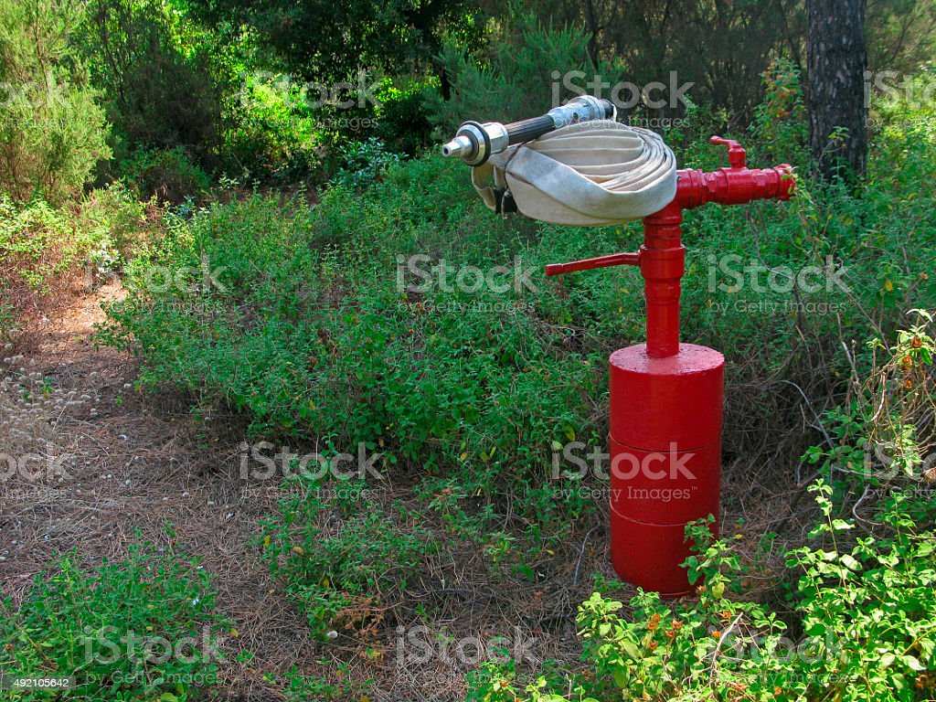 Red fire hydrant with fire hose is ready for work.