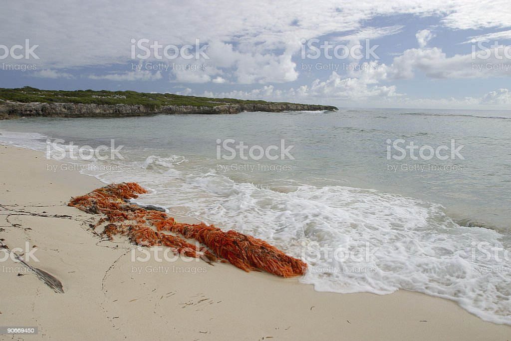 Red Fishing Net stock photo