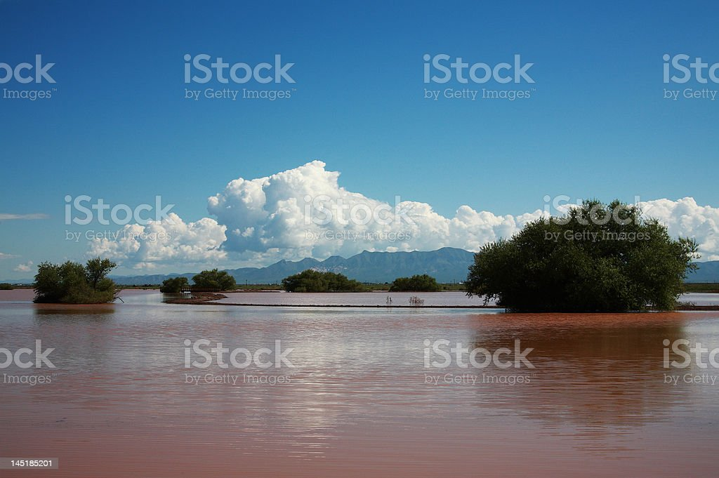 red flood water stock photo
