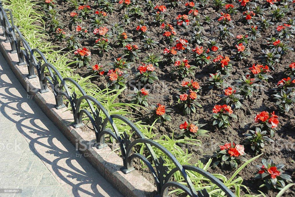 Red Blumenbeet im park Lizenzfreies stock-foto