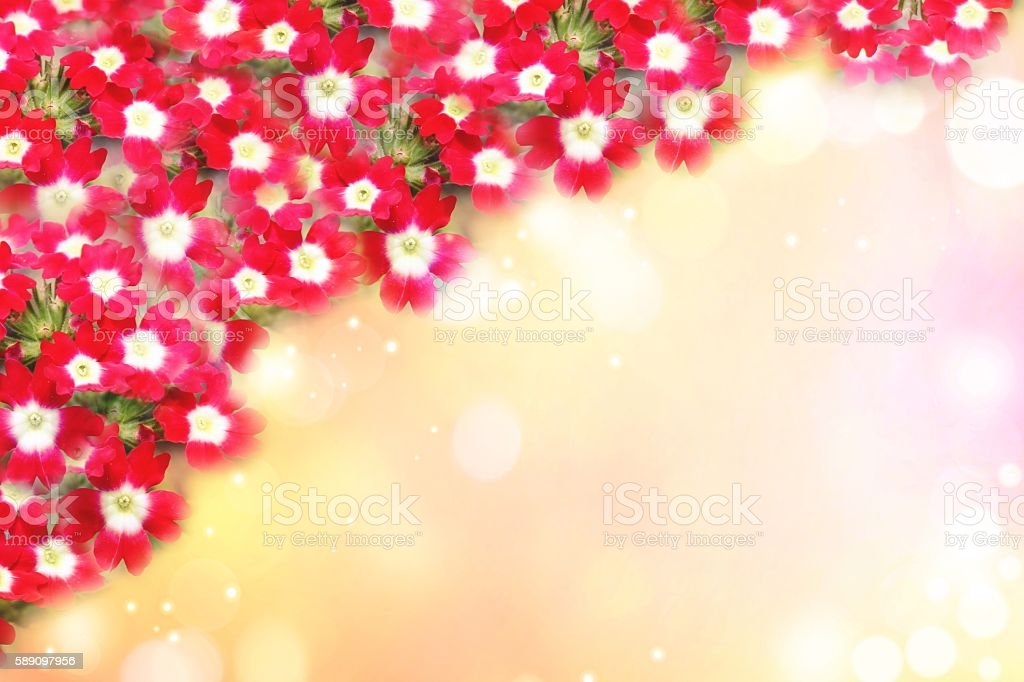 Red Flower Frame For Wedding Background Stock Photo More Pictures