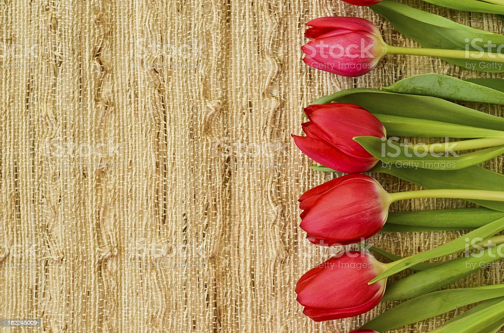 Red flowers on fabric tablecloth royalty-free stock photo