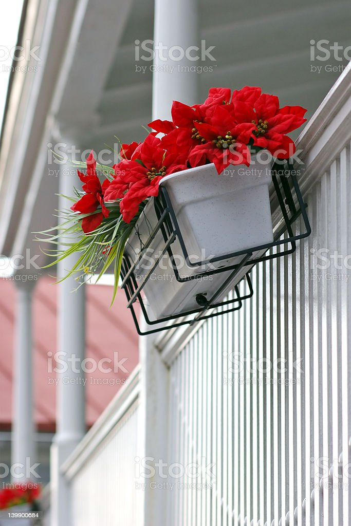 Red flowers on white porch royalty-free stock photo