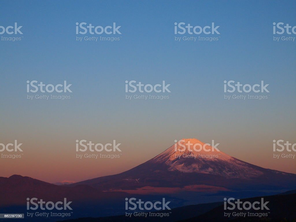 Red Fuji of New Year's Day stock photo