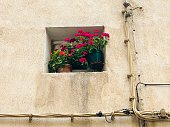 Horizontal photo of a beautiful group of red flowering potted geraniums on a small windowsill on a cream rendered house wall with electric cables in a street in Aux-en-Provence in the south of France