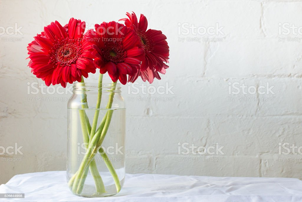 Red gerberas in glass jar stock photo