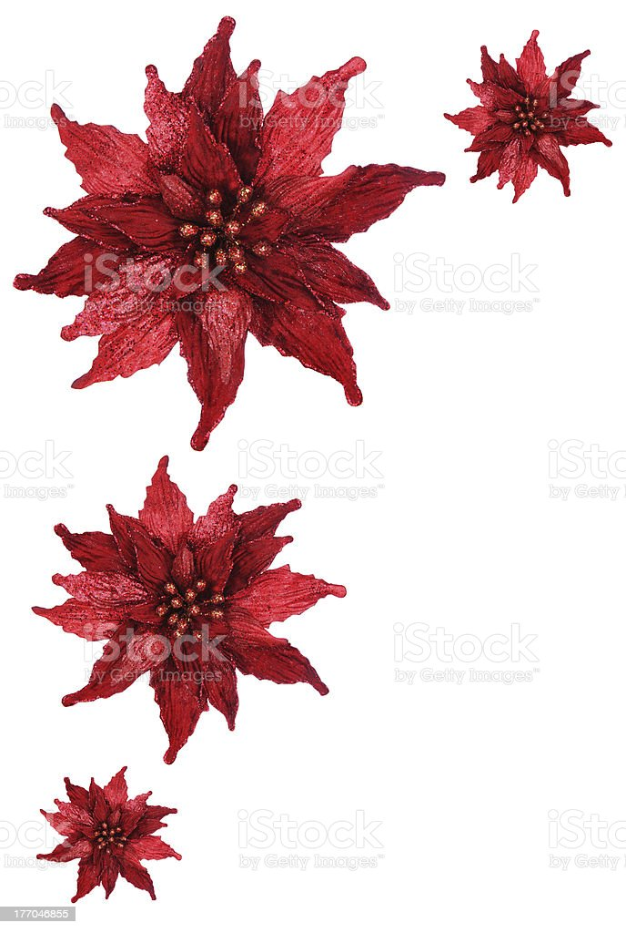 red glitter poinsettia holiday border royalty free stock photo