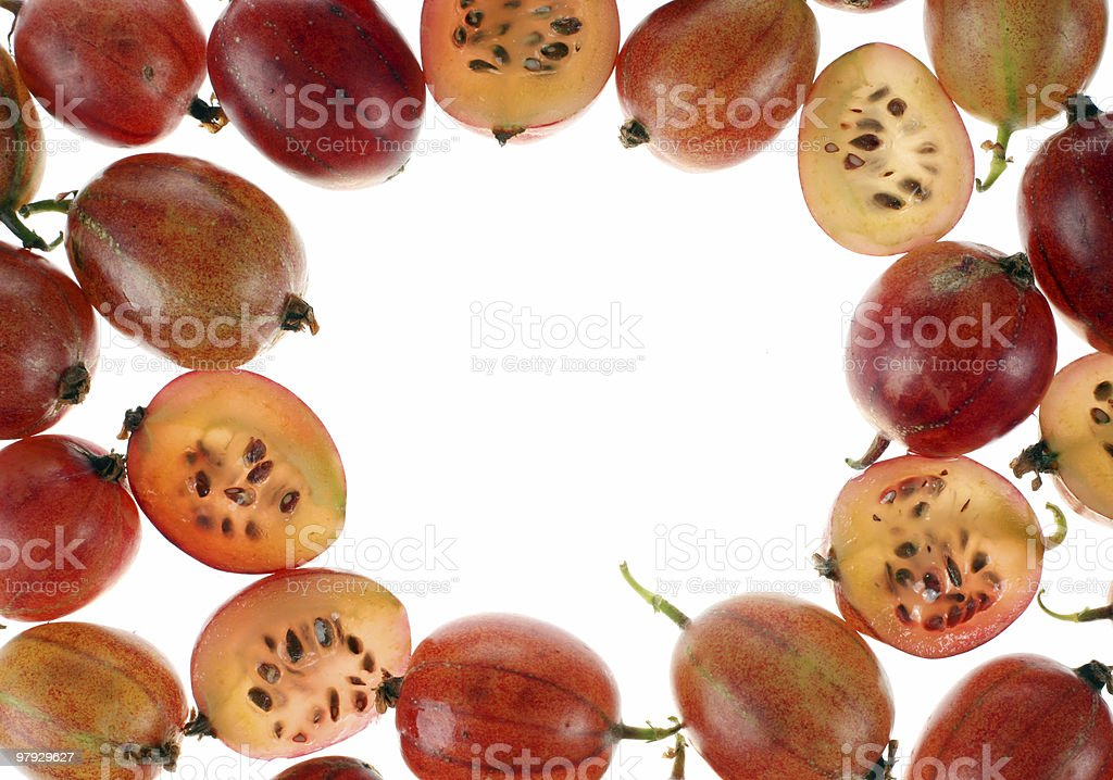 Red gooseberry frame royalty-free stock photo