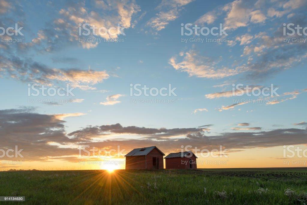 Red granaries at sunset, farmer's field near Grande Prairie, Northern Alberta stock photo