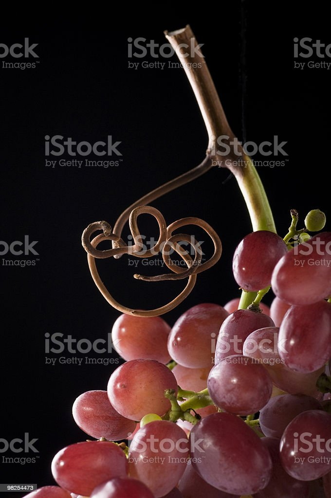 Red Grapes and Tendril on Black royalty-free stock photo