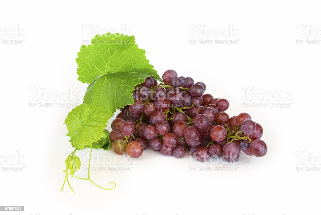 Red grapes on white royalty-free stock photo