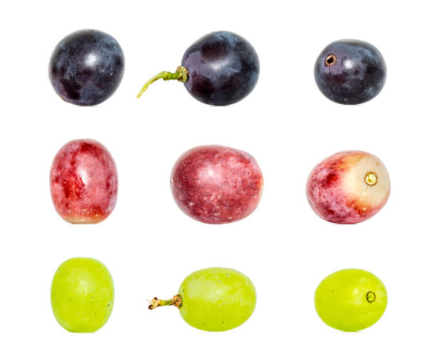 red green and dark blue wine of grapes composition collection in different variations isolated on white background. clipping path - grapes imagens e fotografias de stock