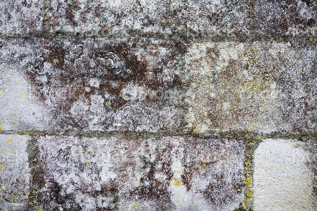 Red, green, yellow mildew on limestone wall royalty-free stock photo