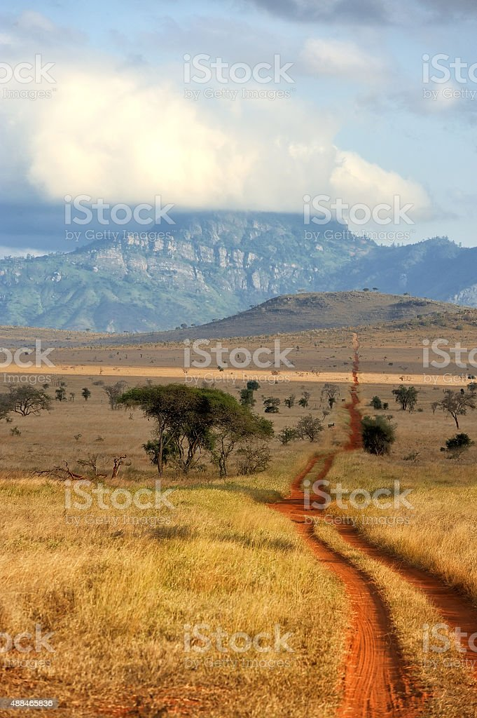 Red ground road and bush with savanna landscape in Africa stock photo