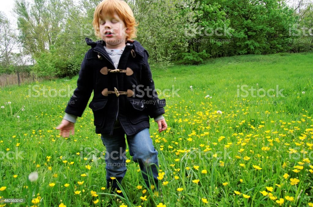 Red hair boy foto stock royalty-free