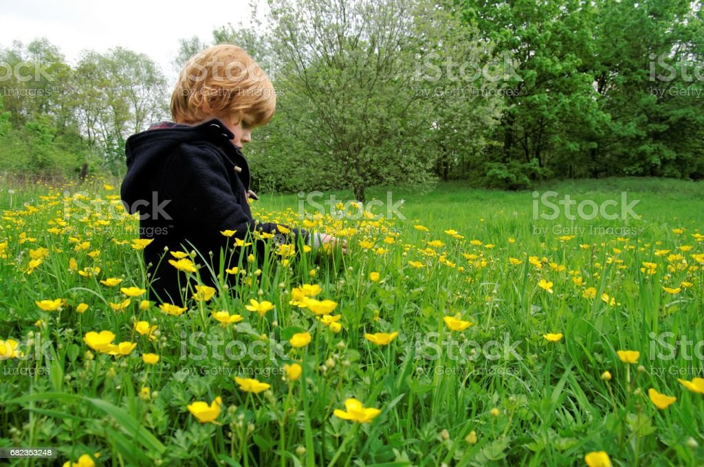 Red hair boy royalty free stockfoto