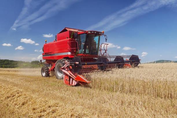 Red harvester harvesting grain on field stock photo