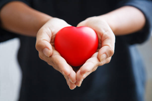 red heart held by female's both hands, represent helping hands, caring, love, sympathy, condolence, customer relationship, patient assistance, life moment, psychological support, service mind concept - coração fraco imagens e fotografias de stock