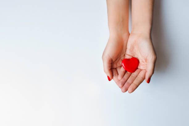 Red heart holding in female hands stock photo