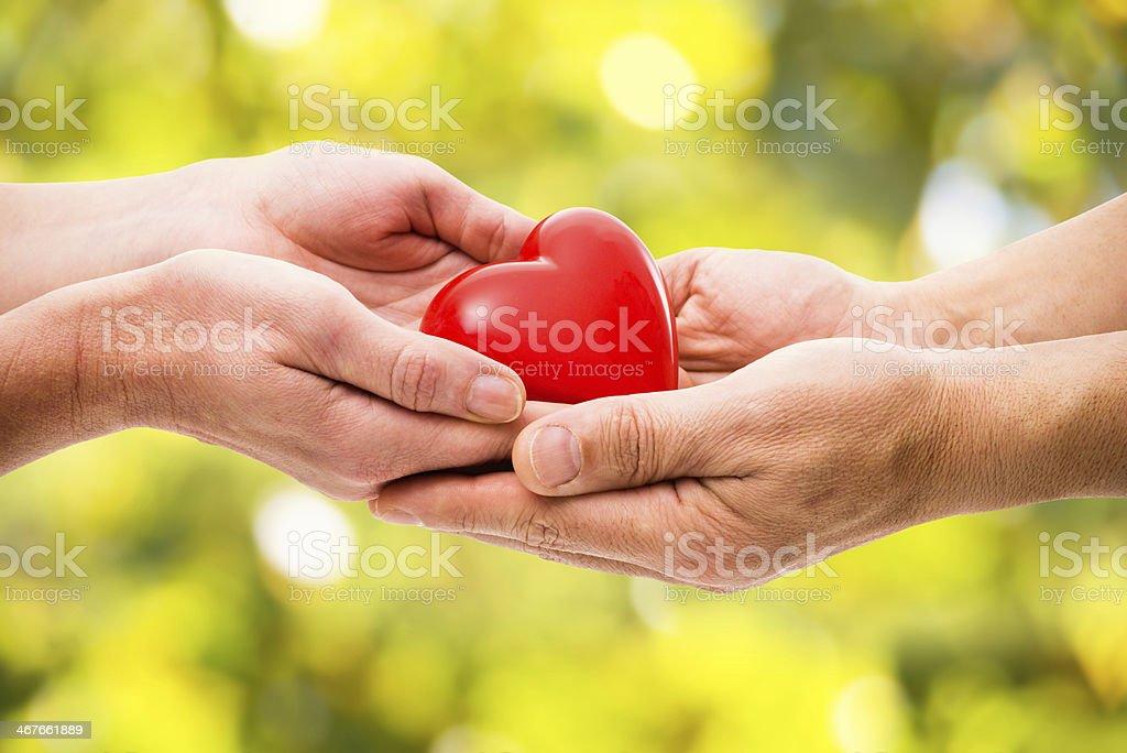 Rosso di cuore in Mano umana - foto stock