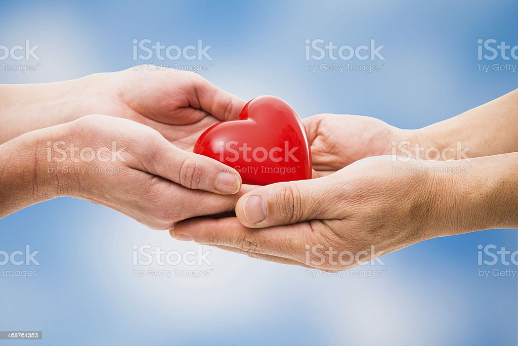 Red heart in human hands stock photo