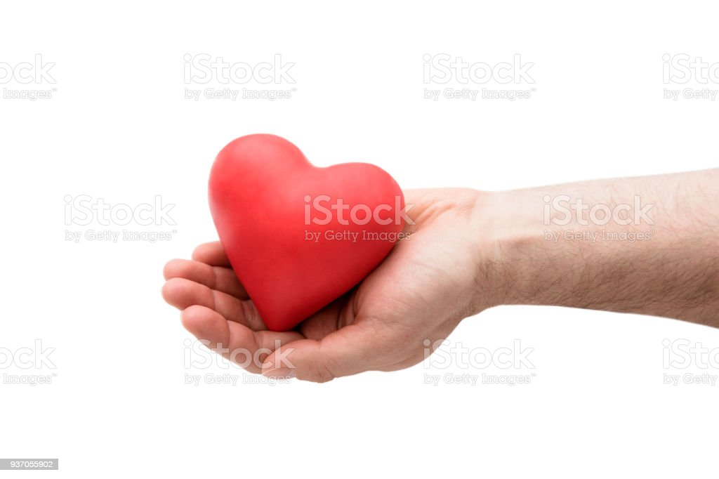 Red heart in man's hand stock photo