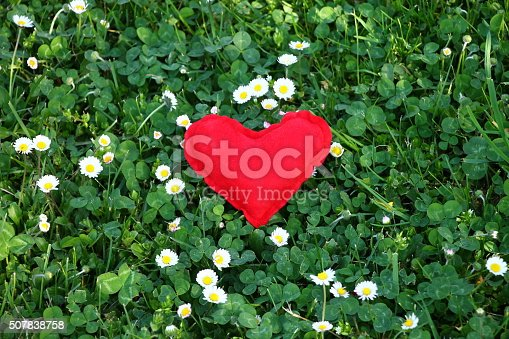 Red heart symbol of love in green grass