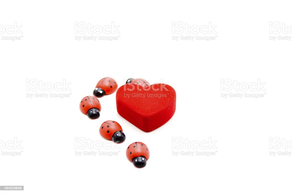 Red heart with beetle stock photo