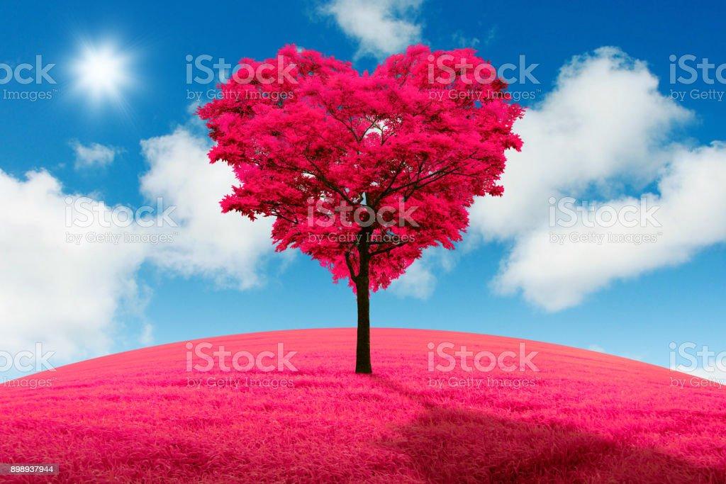 Árvore vermelha em forma de coração em campo contra o fundo de um declínio. - foto de acervo
