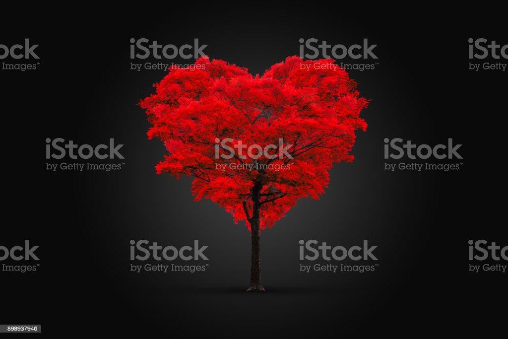 Árvore vermelha em forma de coração isolado no preto - foto de acervo