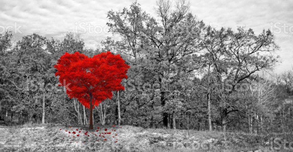 Árvore vermelha em forma de coração - foto de acervo