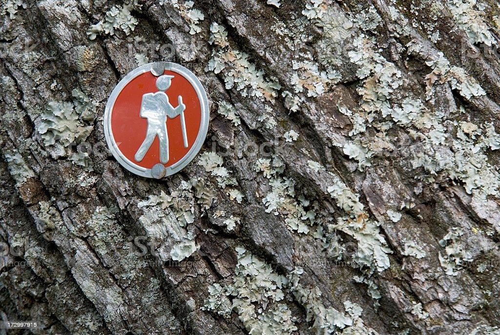 Red Hiking Trail Blaze Marking On Tree stock photo