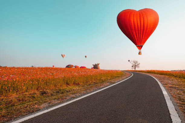 Red hot air balloon in heart shape over flower field. stock photo