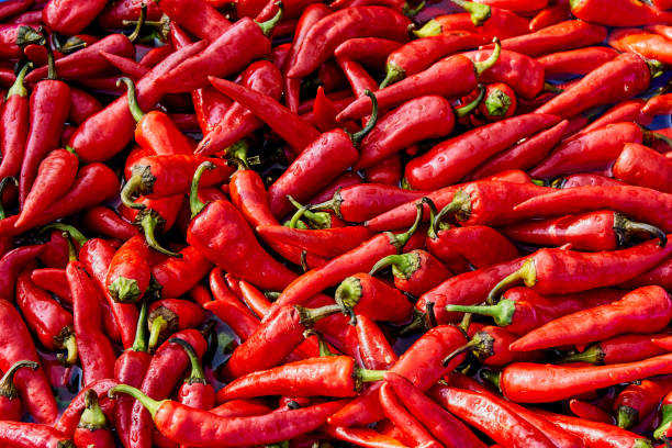 red hot chili peper in een blauwe bekken met water - rode chilipeper stockfoto's en -beelden