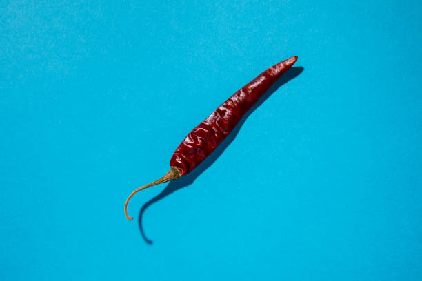 Red Hot Chili pepper on blue background stock photo