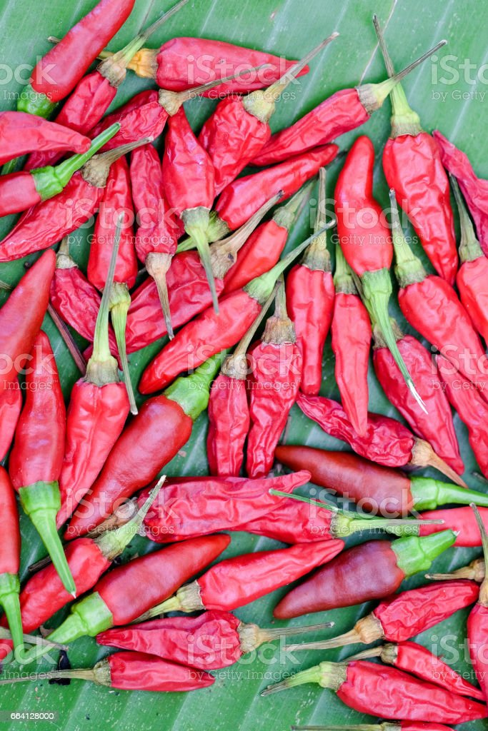 Red hot chili peppers foto stock royalty-free