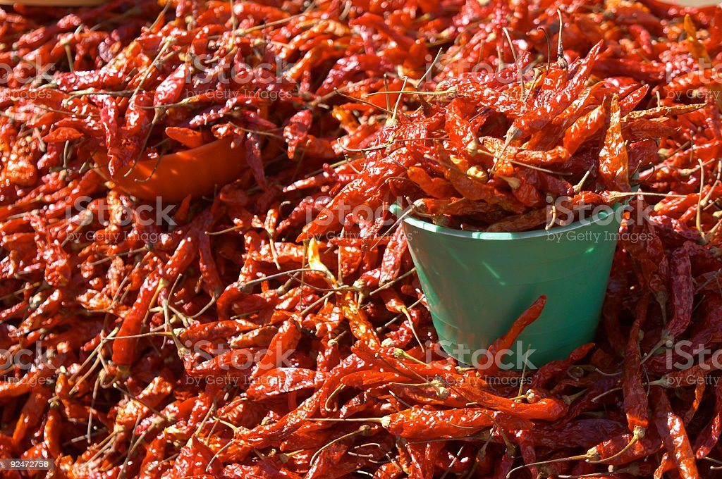 red hot chilli pepper royalty-free stock photo